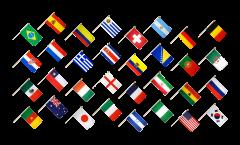 Kit Drapeaux Coupe du Monde 2014 sur hampes - 30 x 45 cm