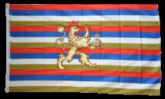 Drapeau Allemagne Palatinat du Rhin 1356-1803 - 90 x 150 cm