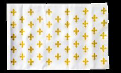 Drapeau France Fleur-de-Lys, blanc - 30 x 45 cm