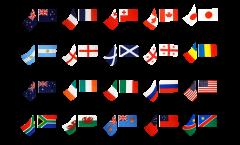 Kit drapeaux sur hampe Coupe du Monde de Rugby 2011, 20 pays - 30 x 45 cm